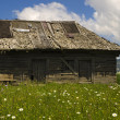 Stockfoto: Traditional wooden house in mountains