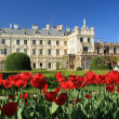 Tulips in front of Lednice castle — Stock Photo