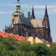 The Prague Castle - St. Vitus Cathedral — Stock Photo