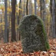 Stock Photo: Old Boundary Stone