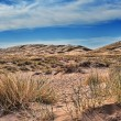Kelso dunes in Mojave National Monument — Stock Photo