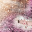 Beautiful winged infant sleeping in a magical forest — Stock Photo