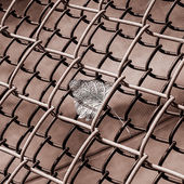 Abstract of autum leaf in chain link fence — Stock Photo