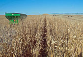 View from the combine — Stock Photo