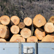 Transportation timber — Stock Photo #30461755