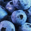 Blueberry — Stock Photo