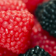 Stock Photo: Candy berry