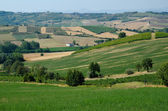 The hills of Tortona and Alessandria in Piedmont - Italy — Stock Photo