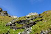 Pastwiska górskie — Zdjęcie stockowe