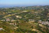 Vineyards in Piedmont — Stock Photo