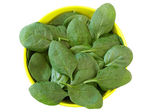 Young spinach in ayellow  plate, isolated on a white — Stock Photo