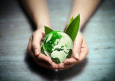 Environmental conservation in your hands — Stock Photo