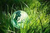 Green globe i gräs — Stockfoto