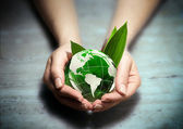 Protect the green of america in your hands — Stock Photo