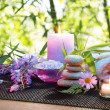 Massage in the bamboo garden with violet flowers, candles  — Stockfoto