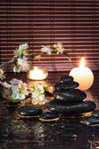 Almond flowers with candles and black stones — Stock Photo