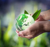Sustainable development worldwide — Stock Photo