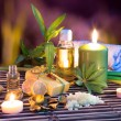Lemon soap , oil, towel, salt, bamboo, and candles in garden — Stock Photo #30596377