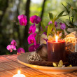 Popurrí, bowl, candles, and orchid - in forest — Стоковая фотография