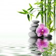 Stock Photo: Purple orchid flower end bamboo on water