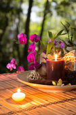 Popurrí, bowl, candles, and orchid - in forest — Стоковое фото