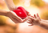 Life in your hands - heart whit orange background — Stock Photo