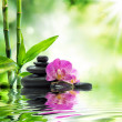 Background spa - purple orchids black stones and bamboo on water — Stock Photo