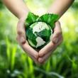 Environmental concept with glass globe and leaves on grass background - America — Stock Photo #34038459