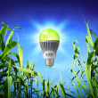 Growth ecology - led lamp - green lighting — Stock Photo #34729073