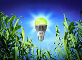 Growth ecology - led lamp - green lighting — Stock Photo