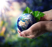 World in hand - environment concept — Stock Photo