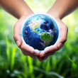 Earth in hands - grass background - environment concept — Stock Photo