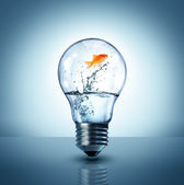 Energy change concept - goldfish jumping into a light bulb - up — Stock Photo