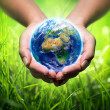 Earth in hands - grass background - environment concept - Europe — Stock Photo #45243277