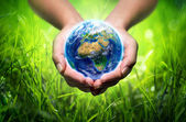 Earth in hands - grass background - environment concept - Europe — Stock Photo