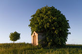 Chapel in front of a Tree in Bavaria, Germany — Stock Photo