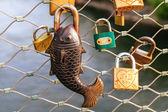 Love Locks — Stock Photo