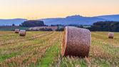 Lovely Hay Bales — Stock Photo