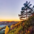 Idyllic Autumn Scenery with Colorful Orange Golden Trees near a lovely Country Road in the rocky Jura Mountains of Bavaria, Germany. Sunset in Fall with a wonderful clear sky in the rural countryside. — Stock Photo #33343679