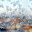Frosty pattern. — Stock Photo