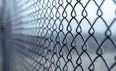 The Netting. — Stockfoto