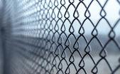 The Netting. — 图库照片