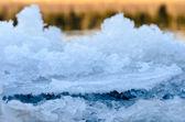 Ice edge. — Stock Photo