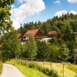 Summer in the Black Forest — Stock Photo