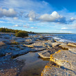Rocky Coastline of Gotland — Stock Photo