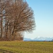 Bavarian Countryside — Stock Photo