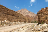 Riverbed road (Wadi) in the UAE — Stock Photo