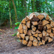 Stock Photo: Wooden logs bundled