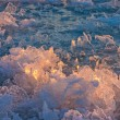 Bizarre Ice Crystals — Stock Photo
