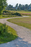 Gravel path — Stockfoto